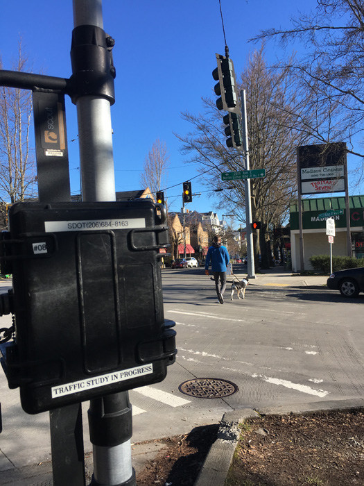 Photo by Brandon Macz: SDOT started collecting more traffic data for the future Lake Washington Loop Neighborhood Greenway in mid-March.